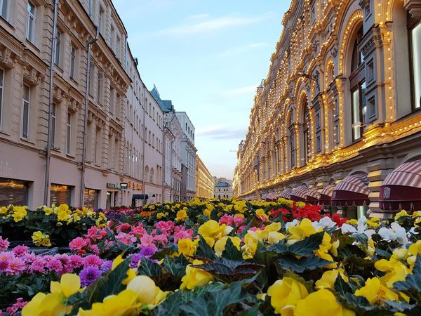 Flowers Architecture Street ГУМ Store Red Square Moscow Illuminated Lights No People Travel Destinations Outdoors Yellow Flower Sky Day