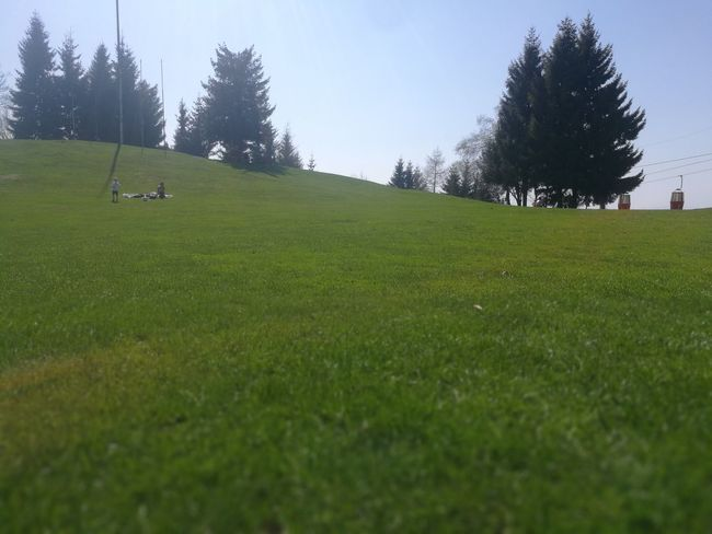 Activity Beauty In Nature Day Environment Field Golf Golf Course Grass Green - Golf Course Green Color Land Landscape Leisure Activity Nature No People Outdoors Plant Scenics - Nature Sky Sport Surface Level Tranquil Scene Tranquility Tree