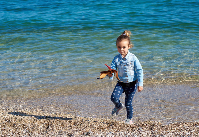 Little adorable girl with a pterodactyl dinosaur toy on the beach Altea Altea, Spain Coastline Dino Dinosaur SPAIN Seashore Beach Casual Clothing Child Childhood Coast Coastal Feature Cute Day Full Length Girl Little Girl One Person Outdoors Sea Seaside Smiling Toy Water