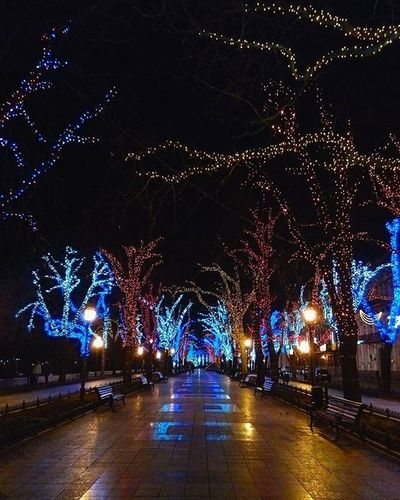Odessa Winter Primorskiybulvar приморскийбульвар Night Lights Odessagram Insta_Odessa