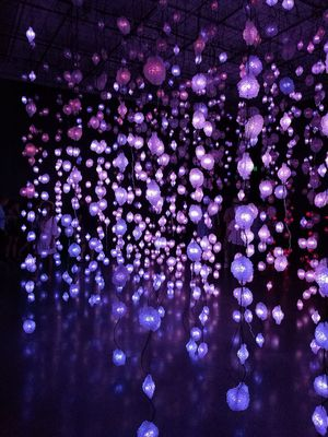 Pipilotti Rist Purple Night Illuminated Nightlife Arts Culture And Entertainment Backgrounds No People