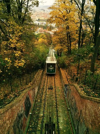 A cablecar travels up... Traveling Autumn Colors Tc-ce2014