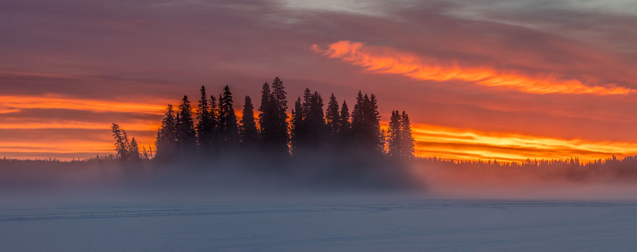 Sunrise from a couple of mornings ago over the island with a freezing fog at Ness Lake. I was frustrated at these clouds from blocking the aurora the night before but they did somewhat redeem themselves the next morning. Ness Lake, British Columbia, Canada Life, Love Photography Frozen Lake Sunset Scenics - Nature Beauty In Nature Sky Tree Orange Color Tranquil Scene Tranquility Cloud - Sky Plant Idyllic Silhouette Nature No People Fog Environment Forest Outdoors Ness Lake, Northern British Columbia, Canada Sunrise Clouds And Sky Island Winter Misty Morning