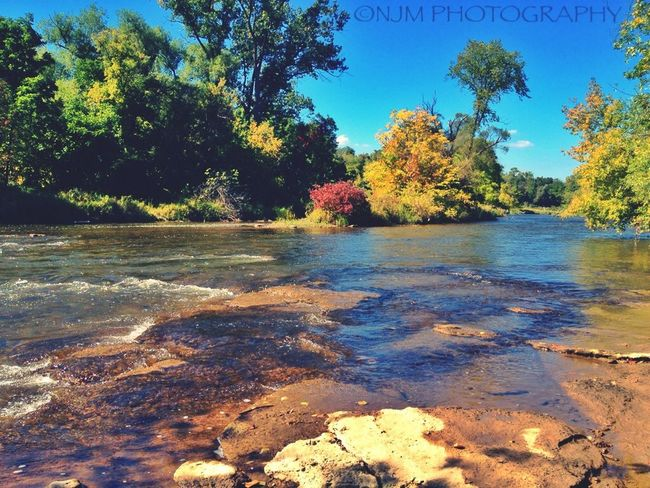 Down by the river beeeeeend! Dont judge... Credit River River Watershed Fall shot and edited with my iphone 4s.