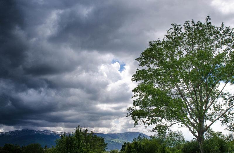 Clouds in