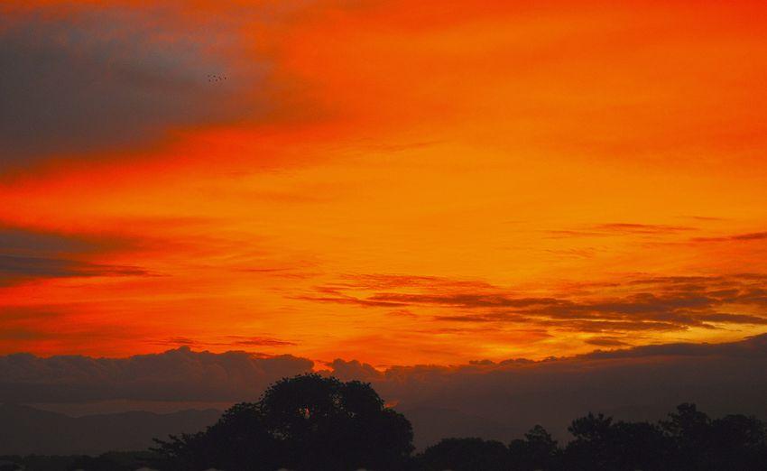 Sunset_collection Orange Sky Sky And Clouds Sunset Silhouettes Skyporn Sunset Colors Nature_collection Serra Da Mantiqueira Pindamonhangaba Sao Paulo - Brazil