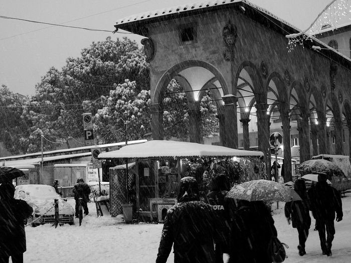 2010 Firenze Firenze, Italy Florence Florence By Night Loggia Del Pesce Neve Neve A Firenze Snow Weather