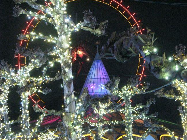 Illumination Japan 観覧車