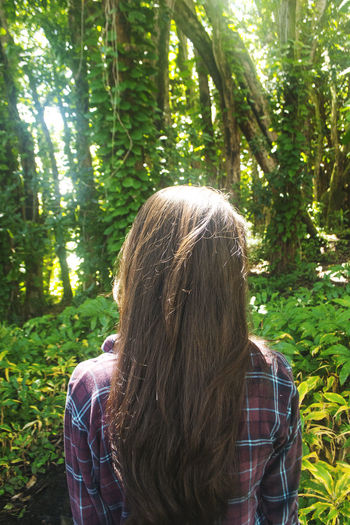 Back Of The Head Big Island Hawaii Brunette Concept Day Explore Exploring Hawaii Forest Girl Girl In Forest Hawaii Lifestyles Long Hair Model Nature One Person Outdoors Rainbowfalls Rainforest Rear View Sunny Day Tree Wavy Hair Women Young Adult First Eyeem Photo