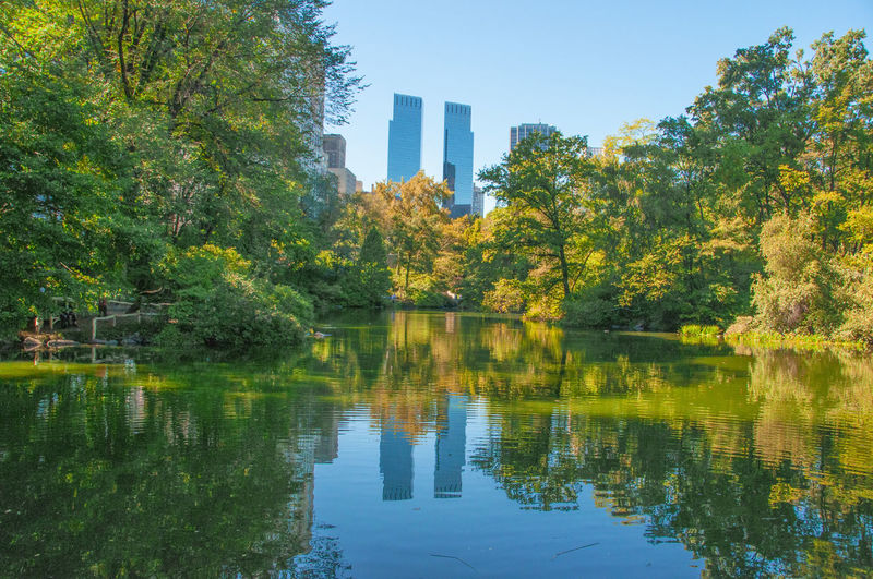 Central Park - NYC Buildings Tree Reflection Nature No People Outdoors Tranquility Skyscraper