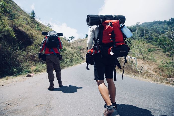 friendly with nature Real People Nature Rear View Lifestyles Full Length Walking The Traveler - 2018 EyeEm Awards Day Backpack Men People Plant Travel Two People Road