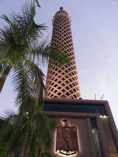 cairo tower very high and i was very scared Amazing Cairo Egypt Cairo Tower Night Palm Tree Theeagle Veryscared Verytall