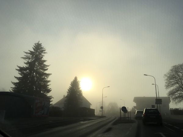 Nebel Fog No Filter Car Transportation Land Vehicle Tree Road The Way Forward Mode Of Transport Street Street Light Silhouette No People Sky Nature Outdoors Sunset Day 3:00 pm. That's the winter 😜🌞❄️