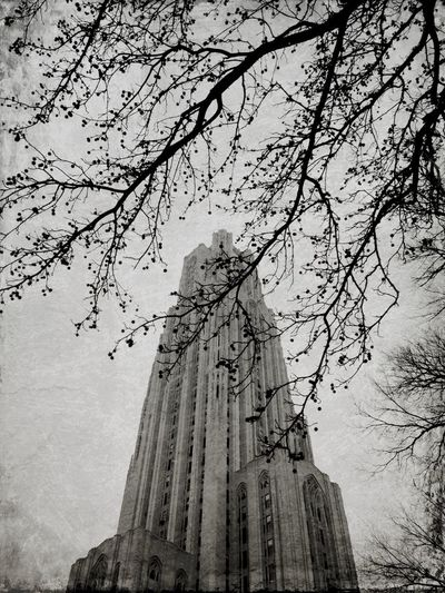 Cathedral of Learning Architecture Old And Beautiful