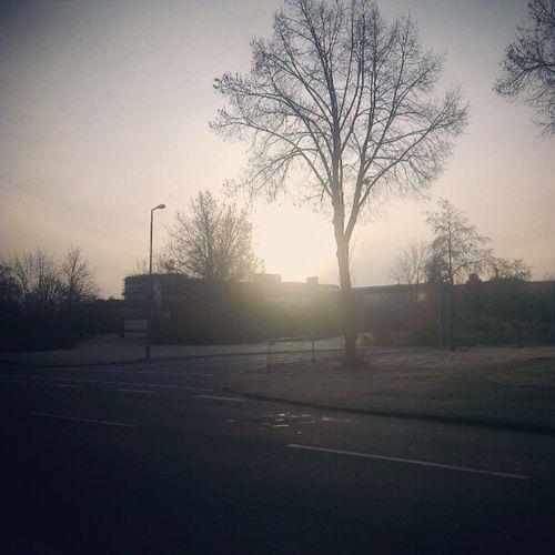 Die #Hochschule der #Bundesagentur für #Arbeit. #Mannheim #Sonne #Gegenlicht Bundesagentur Sonne Gegenlicht Mannheim Arbeit Hochschule