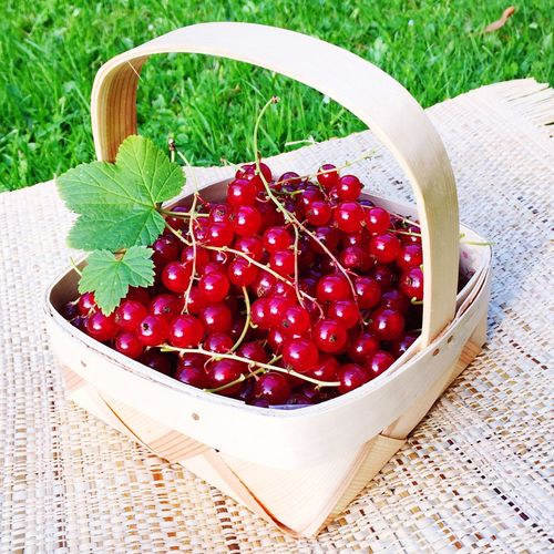 High Angle View Of Red Currant In Basket On Table
