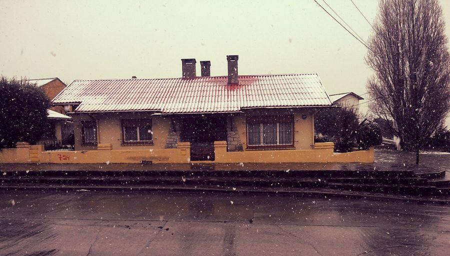 Snow Treet Urban