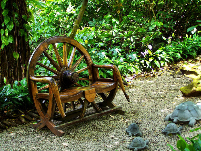 Little wooden chair to relax in along the path Chair For Couple Day Growth Military Nature No People Outdoors Tree Wagon Wheel Wheel Wood Bench Wood Chair