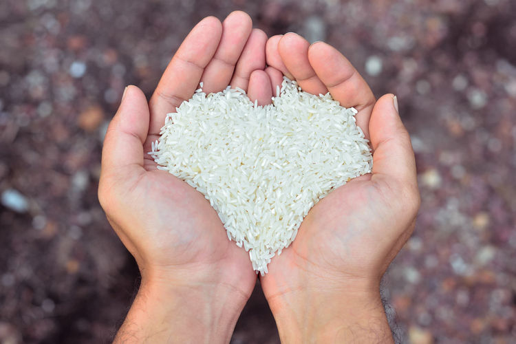 Cropped hands of man holding rice over field