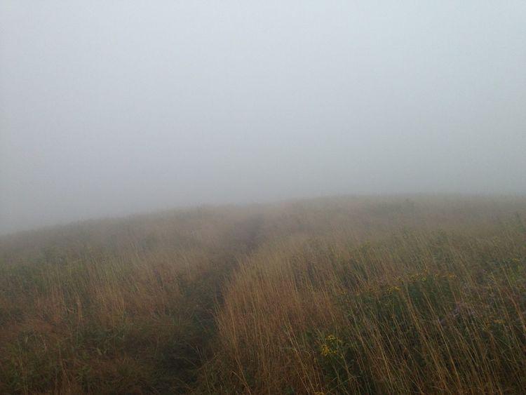 Melancholic Landscapes - Appalachian Trail
