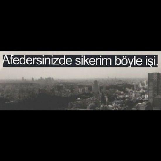 Sikerim Boyle Aşkı ❤
