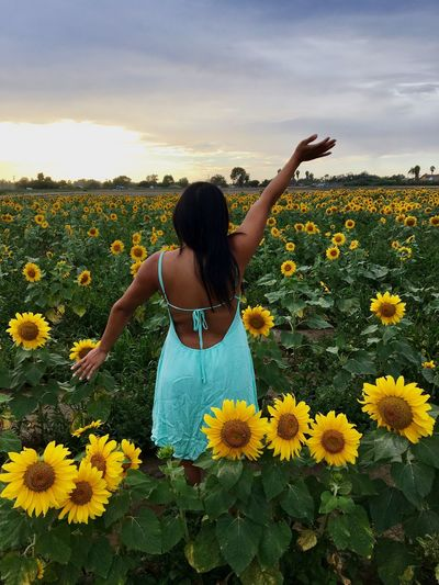 🌻🌻🌻 Sunflower Field Flower Beautiful Beauty In Nature Yellow Nature Bunch Of Flowers Scenics Casual Clothing Young Adult Petal Person Dress The Great Outdoors - 2017 EyeEm Awards