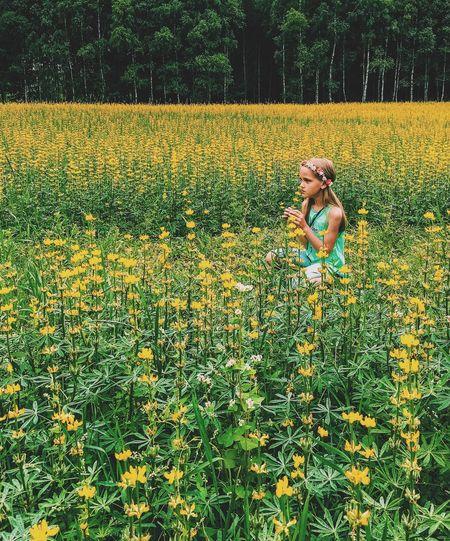 Girl looking away on yellow flowering field