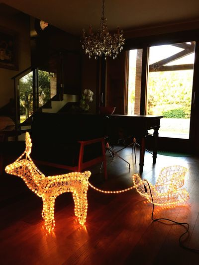 Casa Home Natale  Renna Christmas Lights Indoors  Illuminated Home Interior No People Christmas Ornament Day