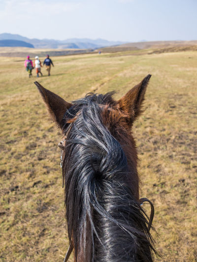 Personal perspective of basotho horseback riding on field against sky, lesotho, africa