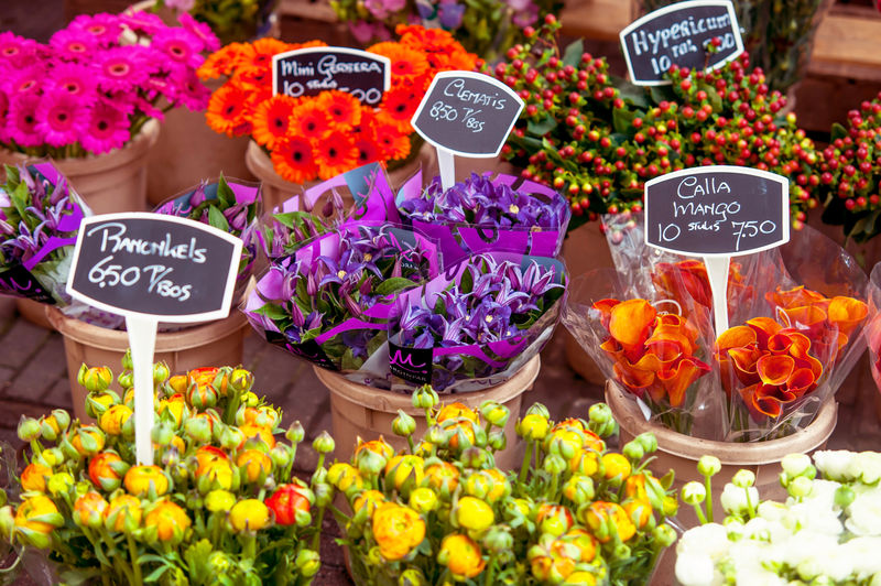 High angle view of flowers displayed at market