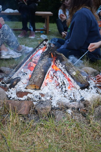 Ash Campfire Camping City Countryside Ember Fire Flame Forest Green Leaf Summer Travel Vacation