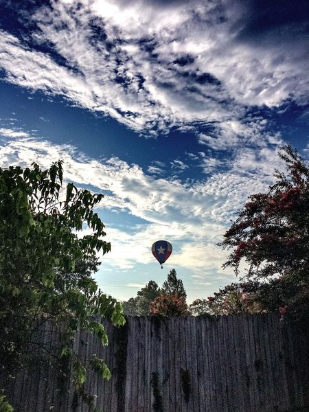 Good morning world. Low Angle View Tree Sky Cloud - Sky Day Outdoors Tranquil Scene Hot Air Balloon Morning Morning Sky Longview, Tx Texas
