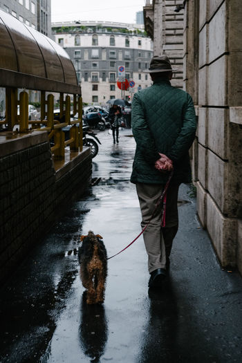 Rear view of man with dog walking on wet street