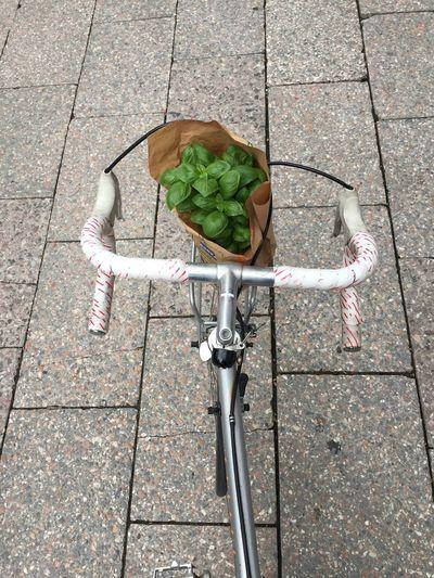 High angle view of bicycle on sidewalk