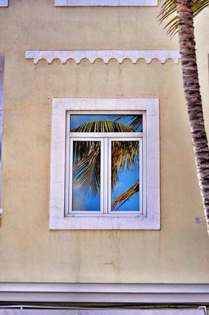 Canary Islands Gran Canaria Playa De Las Canteras Window