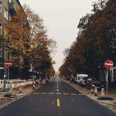 Herbst Autumn Einbahnstraße