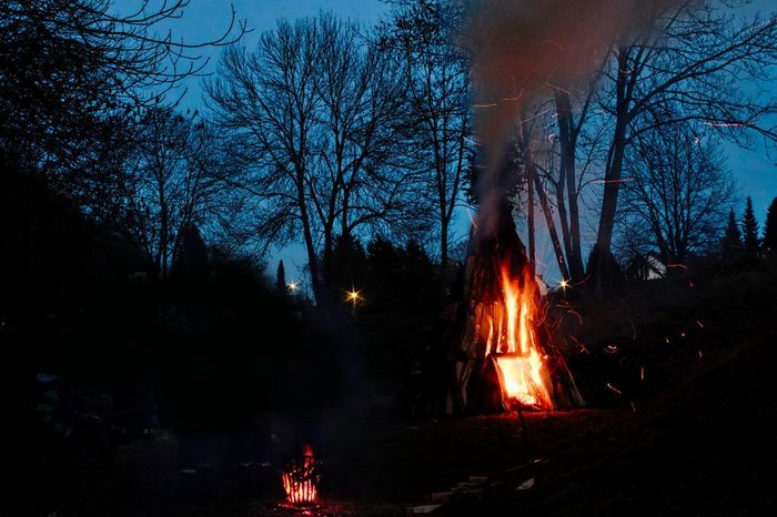 Abendstimmung Bare Tree Beauty In Nature Bonfire Burning Clear Sky Flame Forest Forest Fire Glowing Heat - Temperature Illuminated Lagerfeuerstimmung Motion Nature Night No People Osterfeuer Outdoors Sky Tree