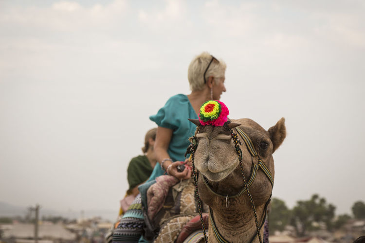 snap shot of camel ride with tourist on back in Pushkar, India Camel Camel Ride Casual Clothing Cloud - Sky Day Focus On Foreground Headshot Indianstories Indiapictures Leisure Activity Lifestyles Nature Outdoor Pushkar Snapshot Tourism Tourist Travel Photography Vacations