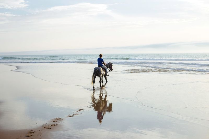 North Africa Low Tide Atlantic Coast Atlantic Morocco Sidi Kaouki Portrait Horseriding Water Sea Beach Land Sky Horizon Over Water Real People Ride Riding Beauty In Nature