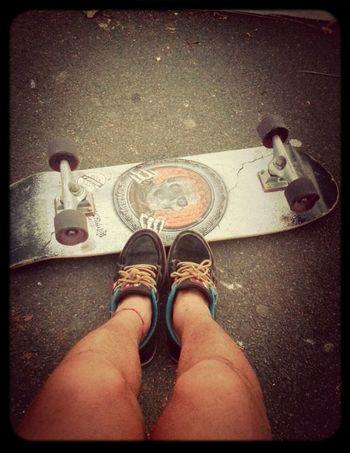 Skatelife Skateboarding Skate Skatepark