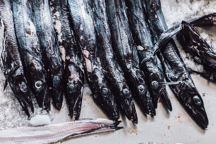 Group of freshness black swordfish. Diet & Fitness Swordfish Animal Fish Fish Market Fishing Industry Food For Sale Freshness Healthy Healthy Eating Healthy Food Healthy Lifestyle Lifestyles Market No People Raw Food Retail  Seafood Still Life Wellbeing