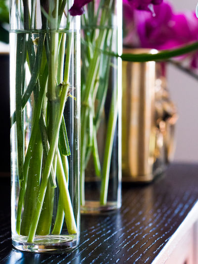 Bamboo - Plant Close-up Day Focus On Foreground Food Food And Drink Freshness Glass - Material Green Color Indoors  Nature No People Plant Reflection Still Life Table Transparent Vegetable Water