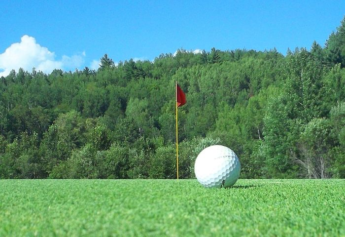 Closeup Day Golf Golf Ball Golf Course Grass Green - Golf Course Green Color No People Outdoors Putting Putting Green Scenic Scenic Golf Course Sport