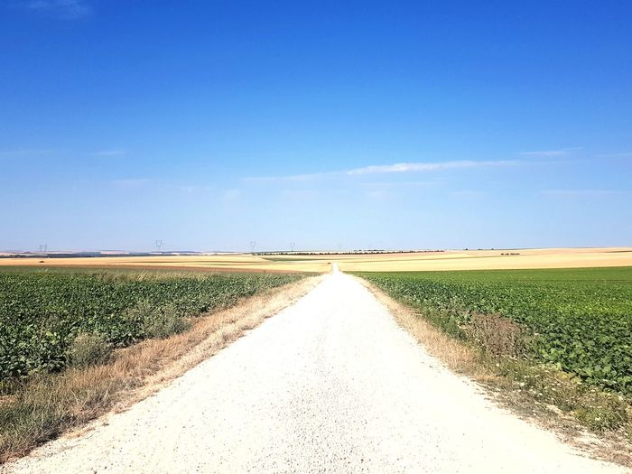 chemin France France Streets Aube Chemins Et Routes Rural Scene Clear Sky Agriculture Field Sky Landscape Cereal Plant Cultivated Land Agricultural Field