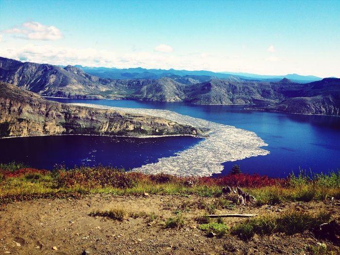 Spirit Lake log jam at Mount St. Helens Spiritlake  Mtsthelens  Mountsthelens  Mountains