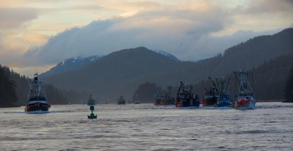 Herring Fleet Boat Cloudy Commercial Fishing Evening Evening Light Fleet Navigation Mark Non-urban Scene Outdoors Remote Salmon Fishing SitkaAlaska