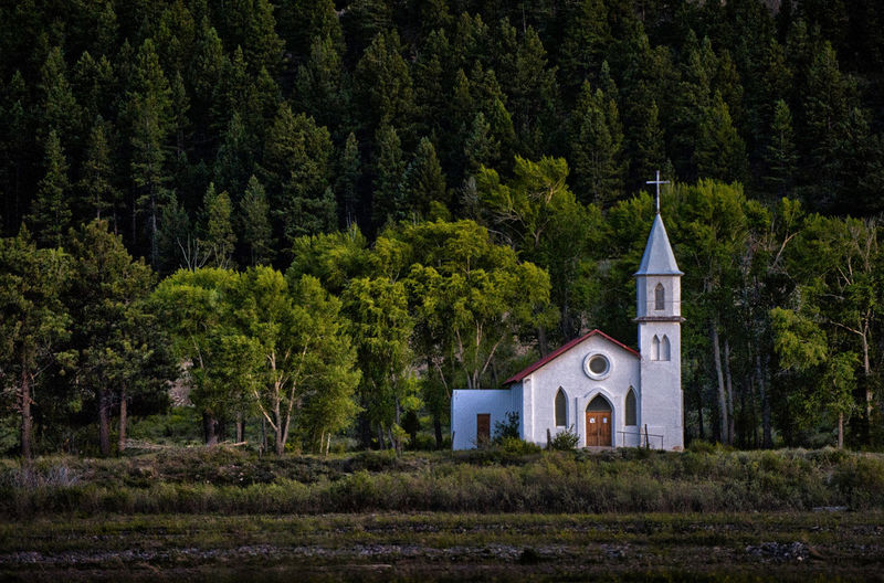 Lone Church in the mountains Architecture Beauty In Nature Building Exterior Church Cross Day Nature No People Outdoors Place Of Worship Religion Spirituality Tree