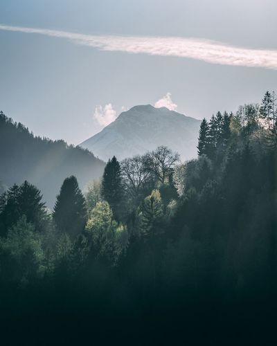 I love this landscape photo, took this in my hometown 🔥🙌 Alps Southtyrol  Italy Moody Moody Sky Tree Sky Beauty In Nature Scenics - Nature Plant Tranquility Nature No People Mountain Tranquil Scene Growth Day Land Forest Environment Outdoors Idyllic Landscape Non-urban Scene