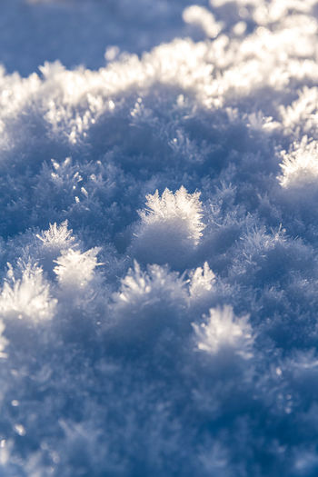 Close-up of snow on land against sky