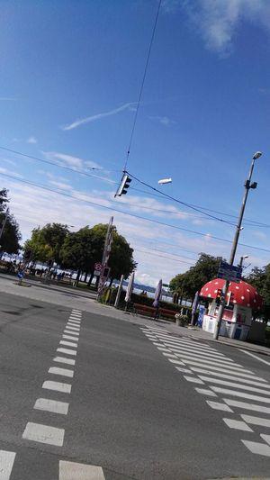 Straßenmarkierung Zebrastreifen Strassenkreuzung Kreuzungen Strassenverkehr Luftfahrt Zeppelin Bregenz Milchpilz Bodensee Verbindungen Asphaltography